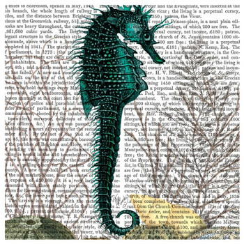 Seahorse and Sea Urchins Print Absorbent Beverage Coasters, Set of 12
