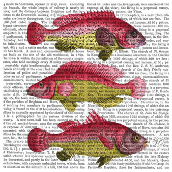 Red & Yellow Fantasy Fish Trio Print Beverage Coasters, Set of 12
