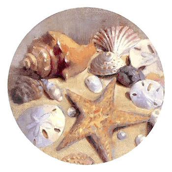 Sea Shells and Starfish Sandstone Beverage Coasters, Set of 8