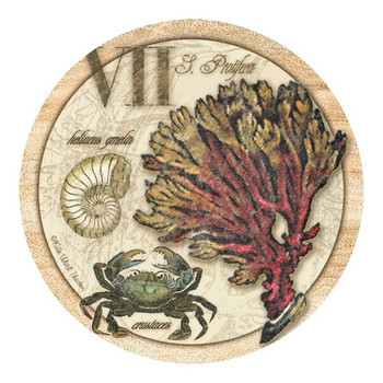 Sea Life Collection Sandstone Coasters by Kate Ward Thacker, Set of 8