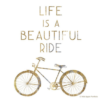Life is a Beautiful Ride Bicycle Beverage Coasters, Set of 12