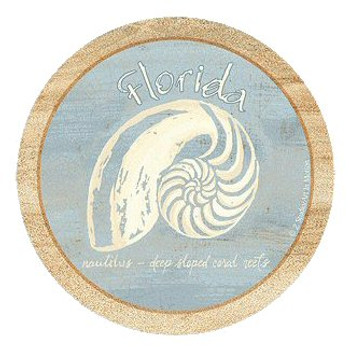 Imperial Nautilus Florida Sandstone Coasters by Z. Studios, Set of 8