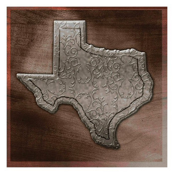 State of Texas Absorbent Beverage Coasters, Set of 8