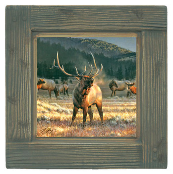 Mountain Meadow Elk Beverage Coasters, Set of 8