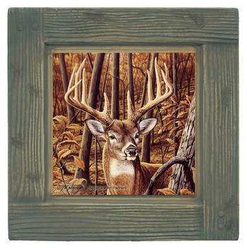 Whitetail Buck Beverage Coasters, Set of 8