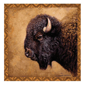 Bison Portrait Absorbent Beverage Coasters by J. Charles, Set of 8