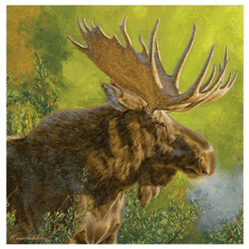 Moose Crisp Fall Morning Coasters by Lee Kromschroeder, Set of 8