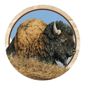 Thunder Beast Buffalo Sandstone Coasters by Peter Eades, Set of 8