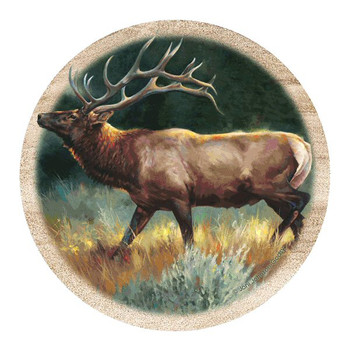 Elk Sandstone Beverage Coasters by Joni Johnson-Godsy, Set of 8
