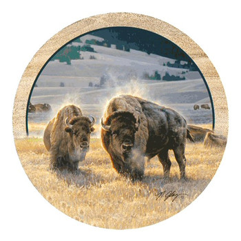 Hidden Valley Buffalo Sandstone Coasters by Nancy Glazier, Set of 8