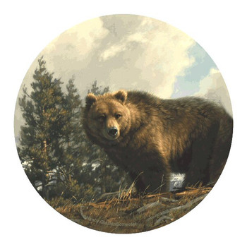 Spring Break Bear Sandstone Coasters by Nancy Glazier, Set of 8