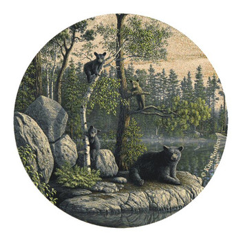 Bears Sandstone Beverage Coasters by Kim Norlien, Set of 8