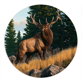 A Sound of Challenge Elk Sandstone Round Beverage Coasters, Set of 8