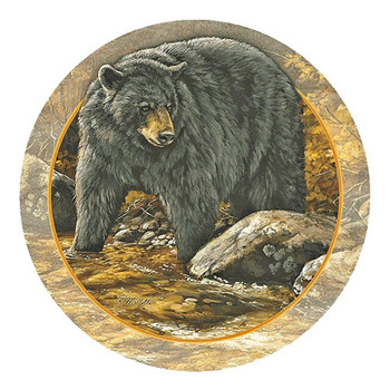 Black Bear Sandstone Beverage Coasters by Rosemary Millette, Set of 8