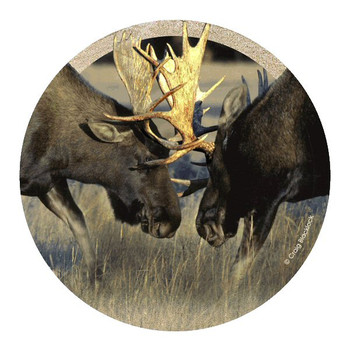 Bull Moose Fight Sandstone Coasters by Craig Blacklock, Set of 8