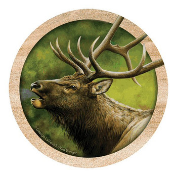 Into the Wind Elk Sandstone Coasters by George LaVanish, Set of 8