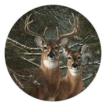 Among the Pines Two Deer's Round Coasters by Carolyn Mock, Set of 8