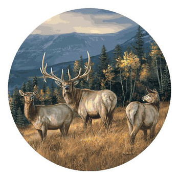 Elk Absorbent Round Beverage Coasters by Rosemary Millette, Set of 8