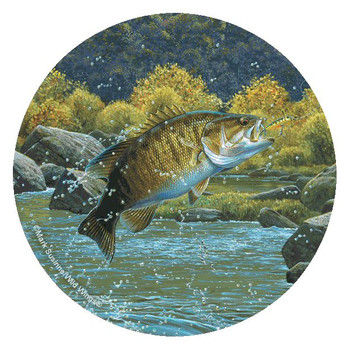 Bass Fish Absorbent Round Beverage Coasters by Mark Susinno, Set of 8