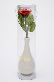 Ivory Porcelain Vases with Red Roses, Set of 2