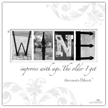 Wine Absorbent Beverage Coasters by Jan Shade Beach, Set of 12