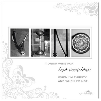 Vino Absorbent Beverage Coasters by Jan Shade Beach, Set of 12