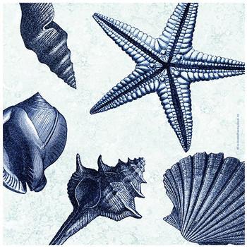 Shell Toss Ceramic Trivets by Tre Sorelle Studios, Set of 2