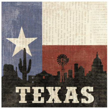 Texas Silhouette Ceramic Trivets, Set of 2