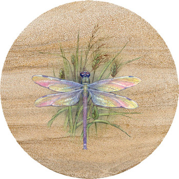 Dragonfly Sandstone Trivet, Set of 2