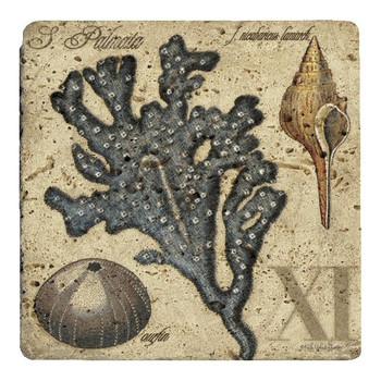 Sea Life XI Travertine Stone Trivet by Kate Ward Thacker, Set of 2