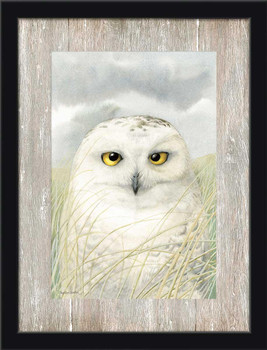 Snowy Owl Bird Wisdom Framed Art Print Wall Art