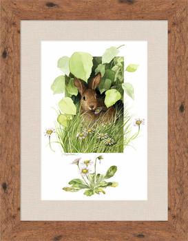 Cloaked in Green Rabbit Framed Art Print Wall Art