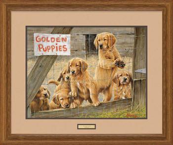 Golden Daze Golden Retriever Puppies Framed Limited Edition Art Print Wall Art