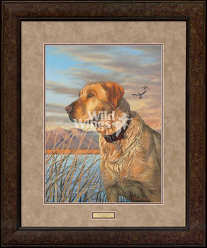 Day Dreaming Yellow Lab Dog Premium Plus Framed Art Print Wall Art