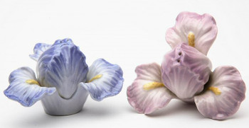 Iris Lilac Flower Porcelain Salt and Pepper Shakers, Set of 4