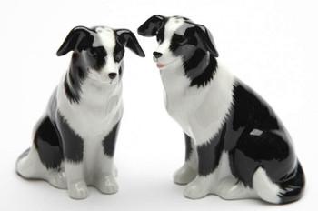 Border Collie Dogs Porcelain Salt and Pepper Shakers, Set of 4