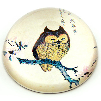Japanese Owl Bird on Magnolia Branch Woodblock Glass Paperweight