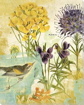Second Bird in the Garden Wrapped Canvas Giclee Art Print Wall Art