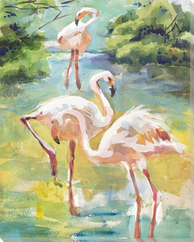 Mating Dance Flamingo Birds Wrapped Canvas Giclee Art Print Wall Art