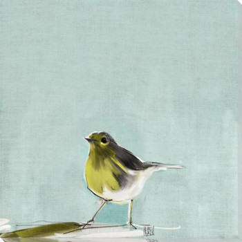 Tweet Tweet Bird 4 Wrapped Canvas Giclee Art Print Wall Art