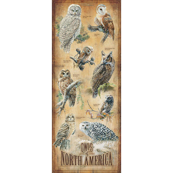 Owl Birds of North America ID Chart Wood Sign