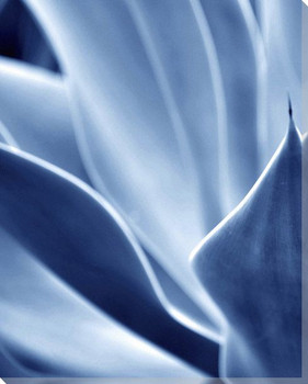 Blue Plant Left Side Wrapped Canvas Giclee Art Print Wall Art