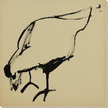 Sketch of a Hen Bird 2 Wrapped Canvas Giclee Art Print Wall Art