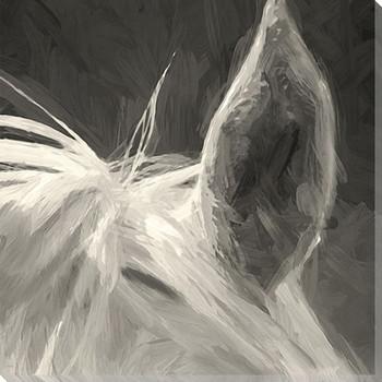 Horse Ear Wrapped Canvas Giclee Art Print Wall Art
