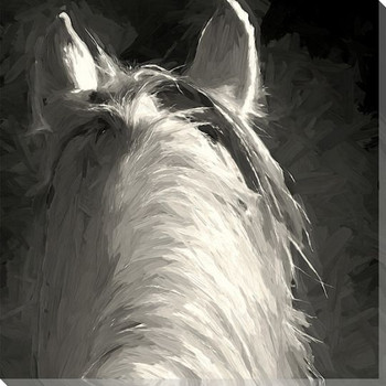 Horse Ears Backview Wrapped Canvas Giclee Art Print Wall Art