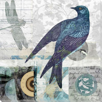 Bird Thoughts IV Wrapped Canvas Giclee Art Print Wall Art
