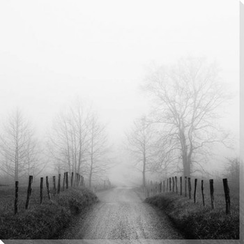 Sparks Lane in Fog Wrapped Canvas Giclee Art Print Wall Art