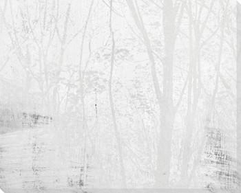 Amidst the Trees Fog I Wrapped Canvas Giclee Art Print Wall Art