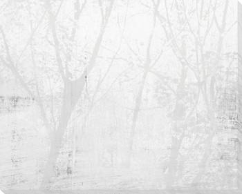 Amidst the Trees Fog II Wrapped Canvas Giclee Art Print Wall Art