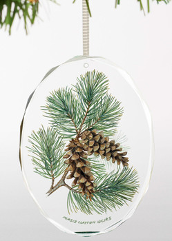 Fruits of the White Pine I Oval Glass Christmas Tree Ornaments, Set of 6